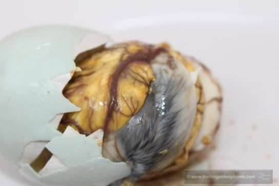 Balut Phillipines - Crunchy Duck Fetus for Breakfast - The Longest Way Home