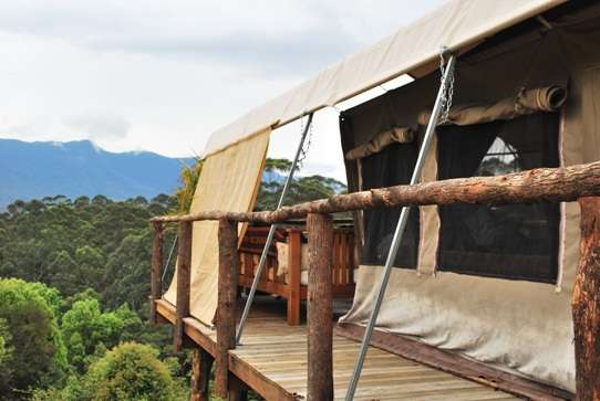 Glamping australia  photo image