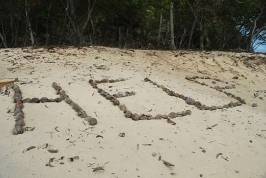 Help Castaway movie fiji  photo