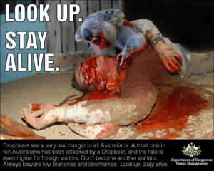 Drop Bears Warning