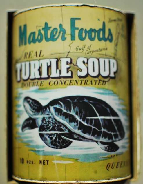 Turtle Soup Can australia  photo image
