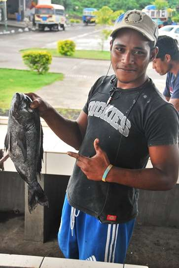 Fishmonger Seafood Savaii Markets Samoa samoa  photo image