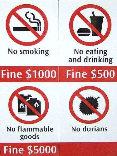 No Durian Sign Singapore singapore  photo image