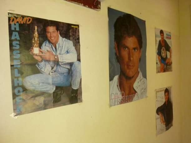 David Hasselhoff Pictures interviews  photo