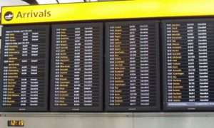 Flight Status Updates - Funny