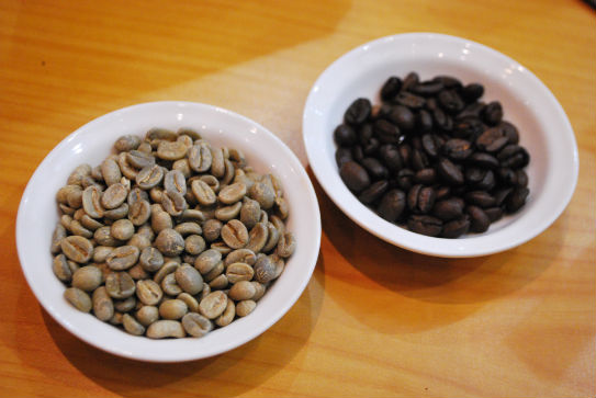 Kopi Luwak Coffee   Beans indonesia pestablogger 2009  photo image