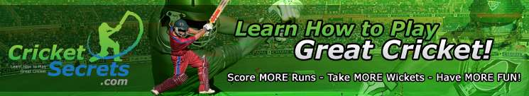 Cricket World Cup How To Play