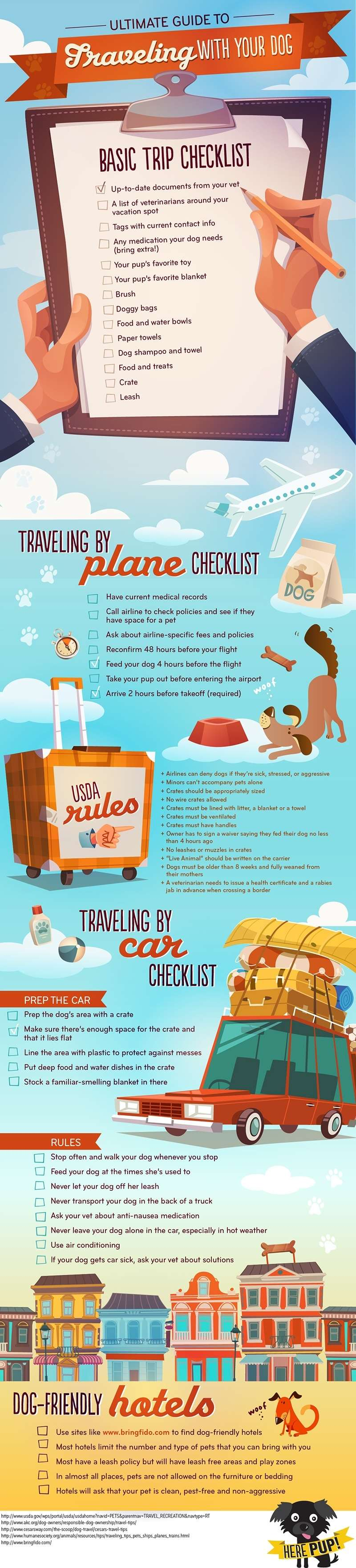 Pet Travel Dogs Infographic