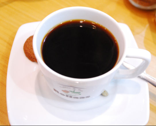Cup of Kopi Luwak Coffee